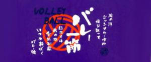 バレー一筋(紫色)