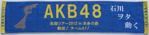 AKB48ライブ応援用マフラータオル