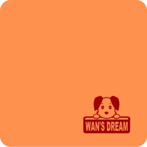 wans_engi