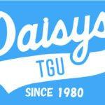 Daisys2014