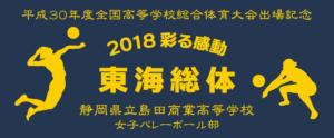 島田商業高校女子バレーボール部_様
