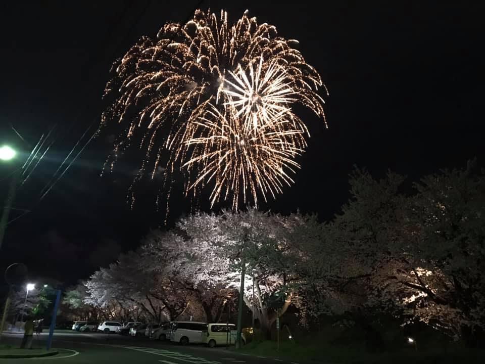 長野アークス初の試み。夜桜と花火のコラボレーション!