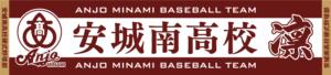 安城南高校硬式野球部_最終